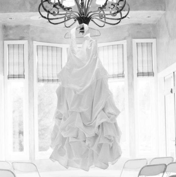David's Bridal Dresses & Skirts - Plus Size Wedding Dresd
